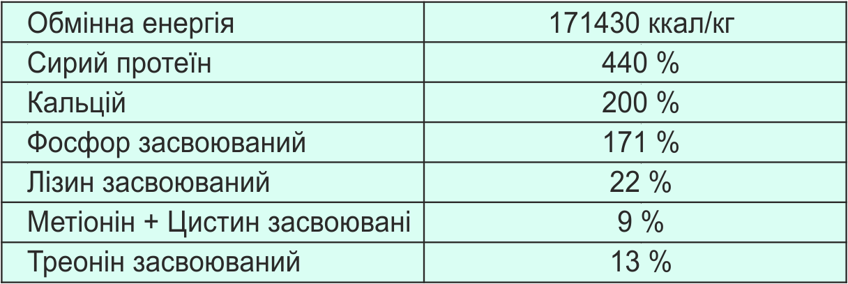 матриця_свині